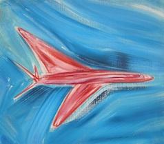 red plane blue sky 14