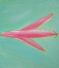 pink plane green sky 16